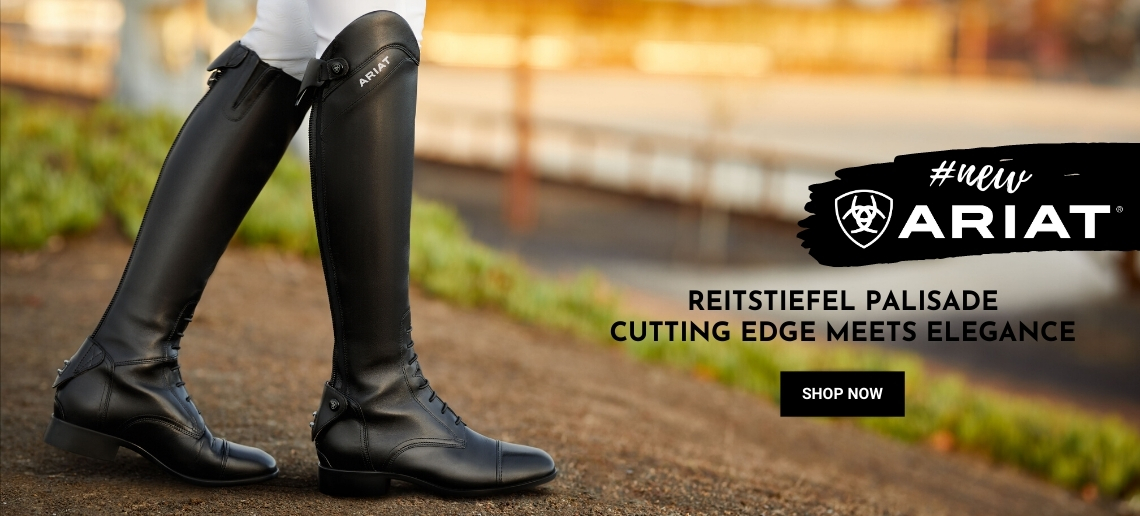 Ariat Reitstiefel Palisade (new)